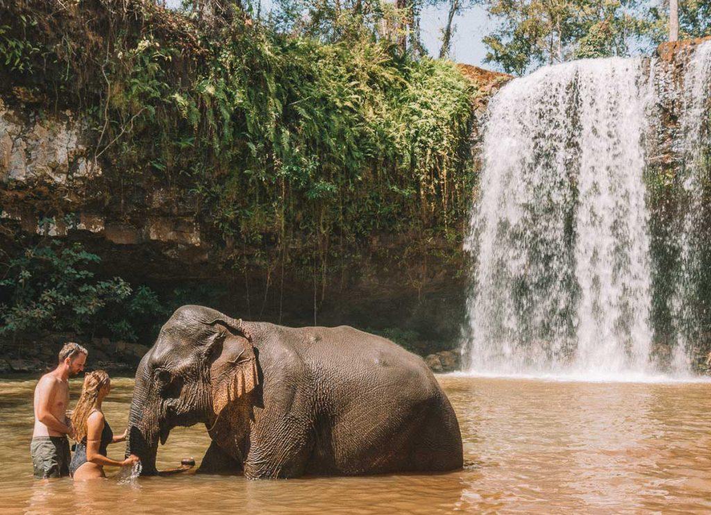 ratanakiri-cambodia-elephants
