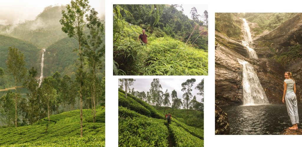 Pictures from Nallathanniya waterfall hike