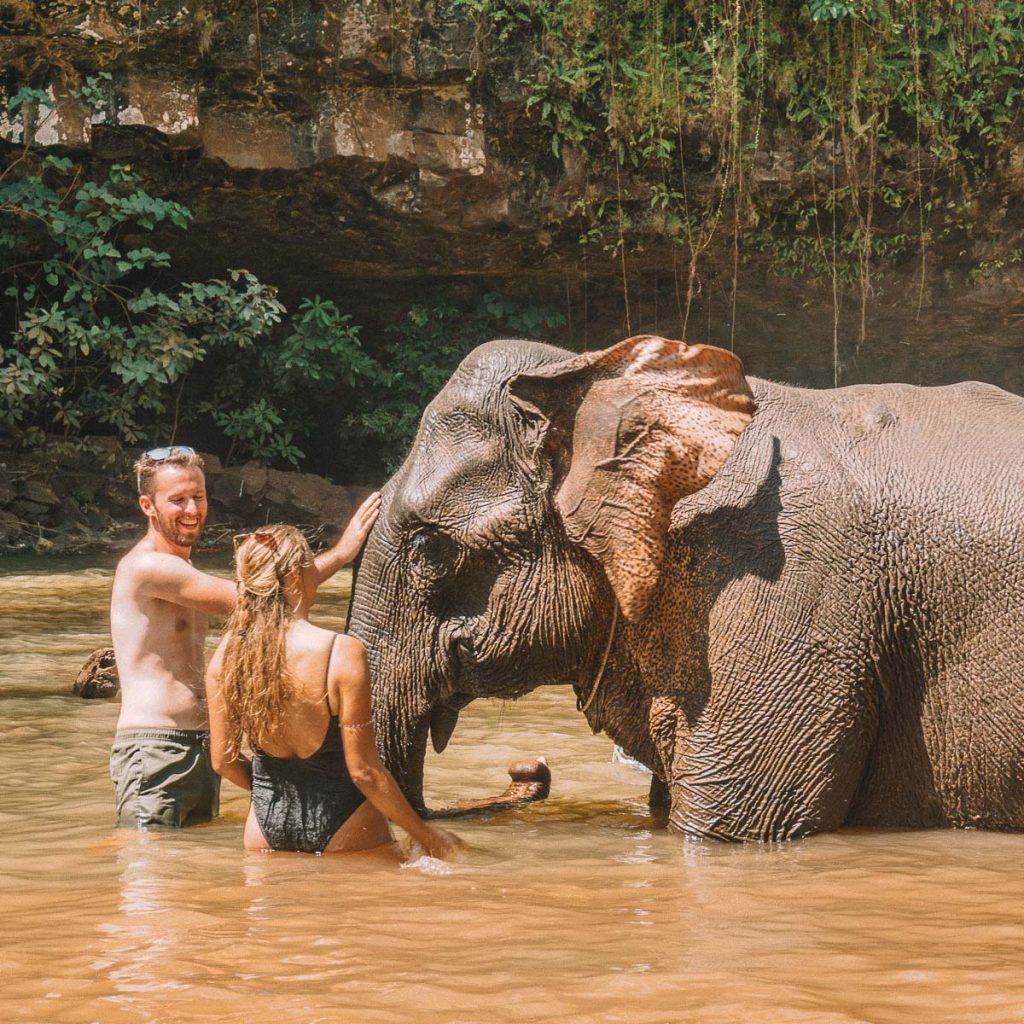 Airavata - Elephant spa